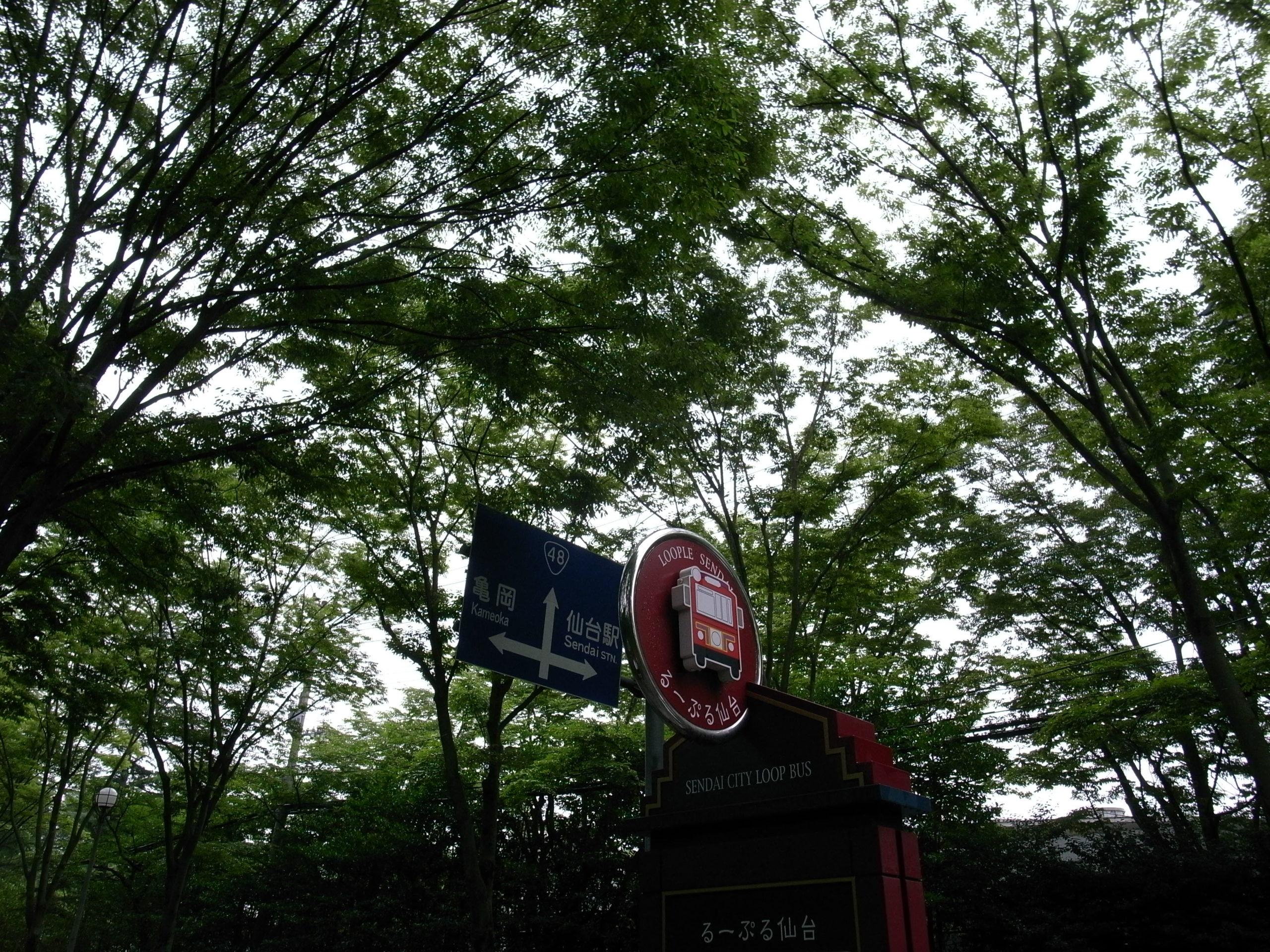 仙台観光バス