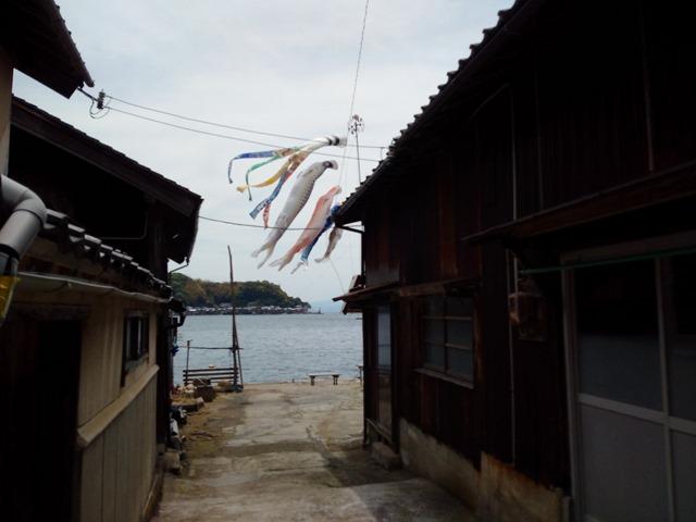 伊根町鯉のぼり散歩
