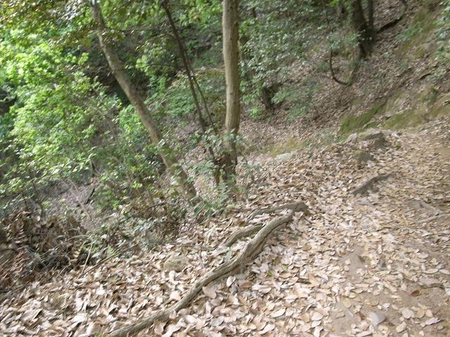 鳥取城久松山険しい大変登るの