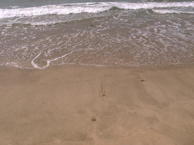 東浜海岸きれい