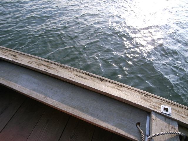 矢切の渡し感想舟