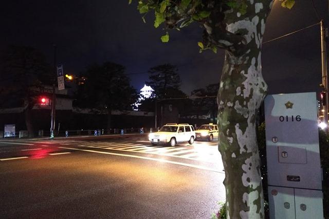 府内城ライトアップ