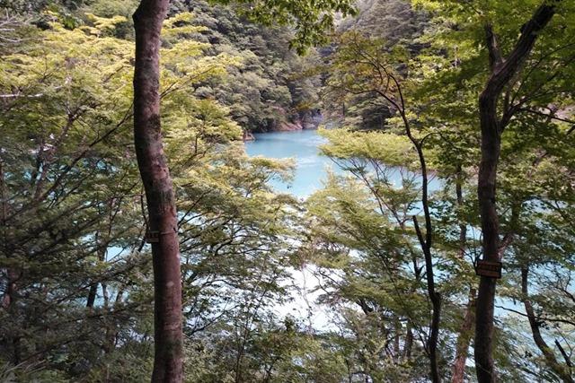 夢の吊り橋チンダル湖